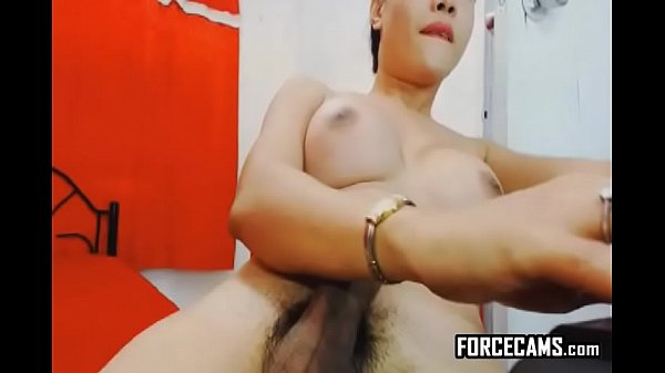 Escort, Asian ladyboy, Asian amateur