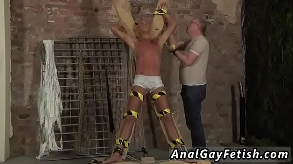 Bears, Bear gay, Gay bear, Bound